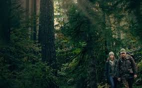 Leave No Trace – film review
